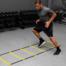 fitness ladder gym
