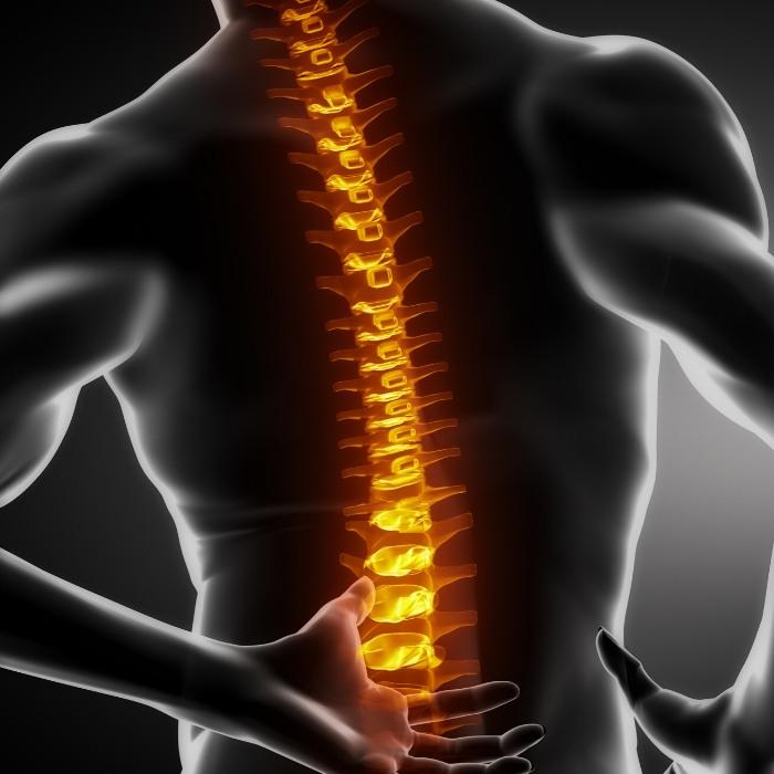 ab roller back pain