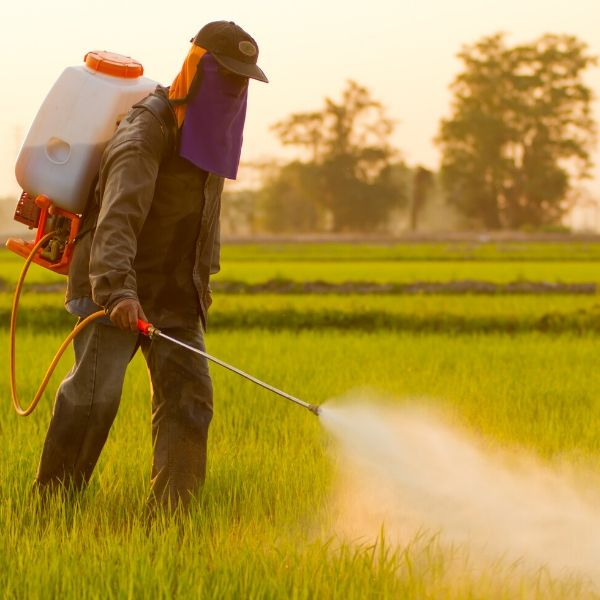 harmful pesticides use alkaline water