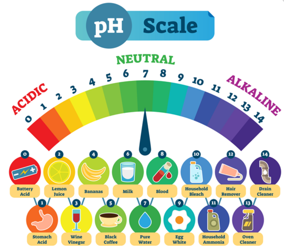 Ph Scale Alkaline Water