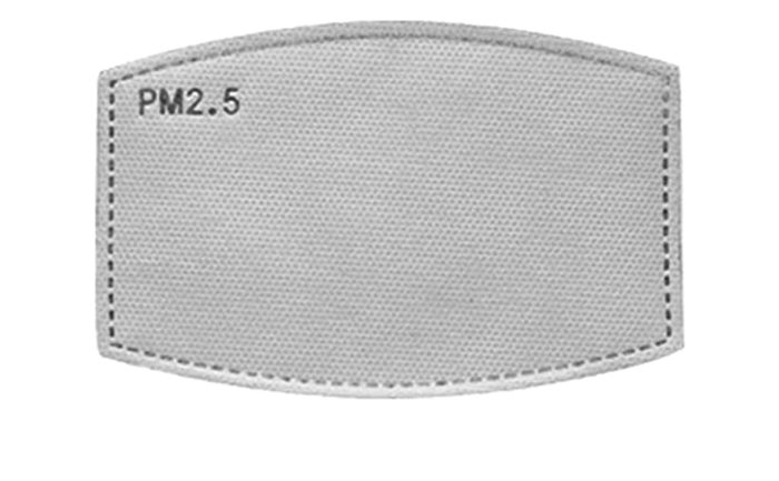 PM 2.5 Filter
