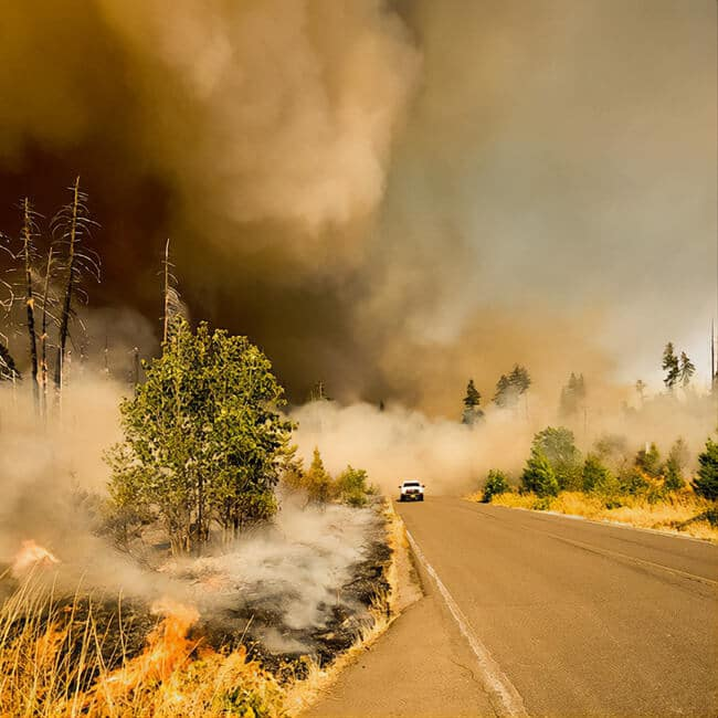 wild fire areas face mask with fan