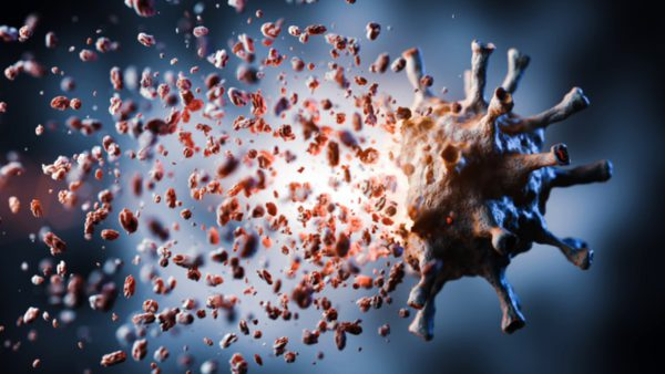 how copper ions kill germs